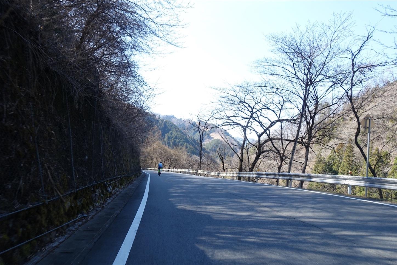 f:id:road_mushi:20190417223830j:image