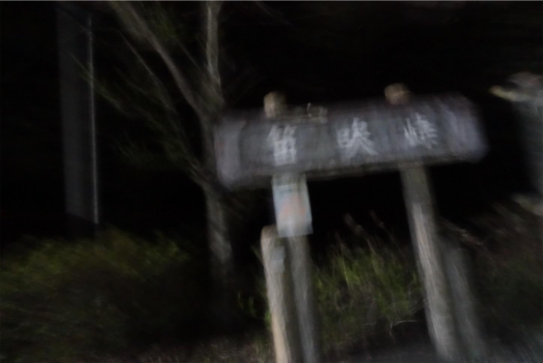 f:id:road_mushi:20190417224719j:image