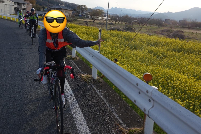 f:id:road_mushi:20190417224850j:image