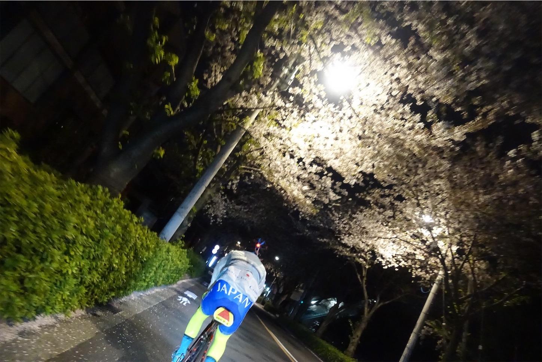 f:id:road_mushi:20190417225501j:image