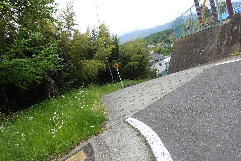 f:id:road_mushi:20190515175154j:image