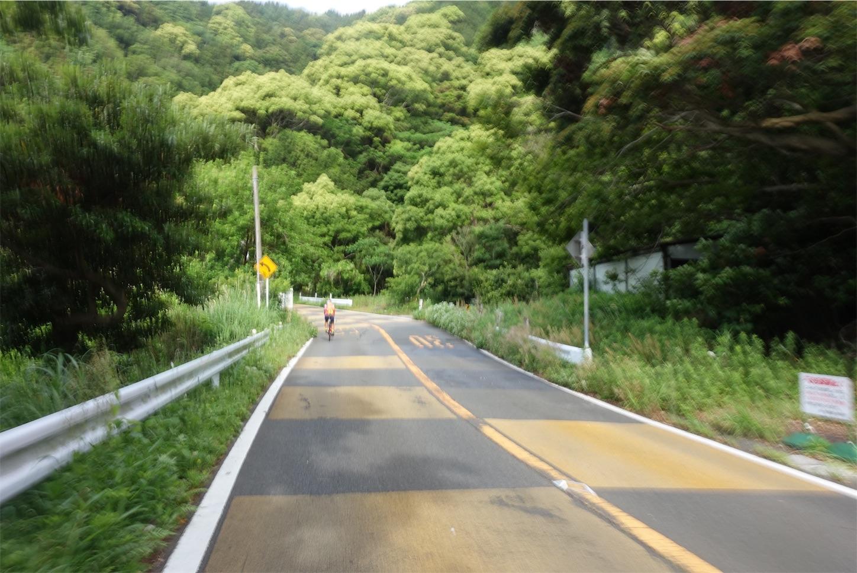f:id:road_mushi:20190522183710j:image