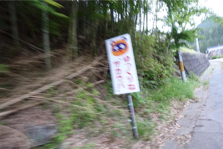 f:id:road_mushi:20190523234208j:image