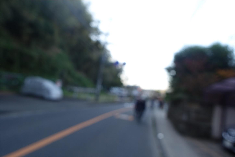 f:id:road_mushi:20191111185611j:image