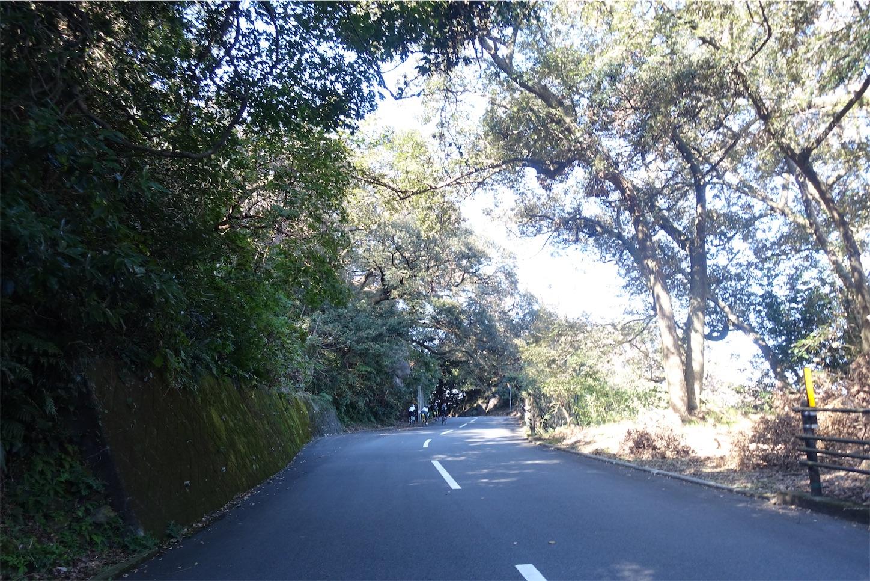 f:id:road_mushi:20191119183400j:image