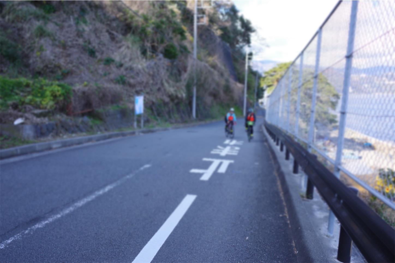f:id:road_mushi:20200109185505j:image