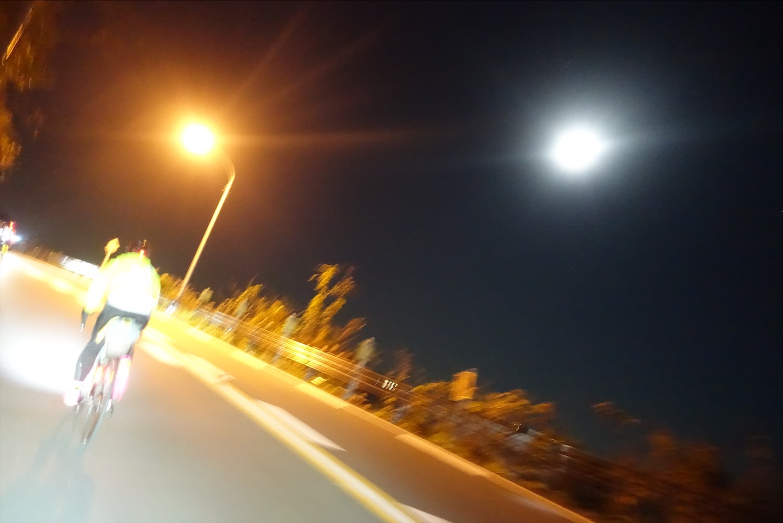f:id:road_mushi:20200115173914j:image
