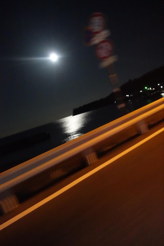 f:id:road_mushi:20200115174120j:image