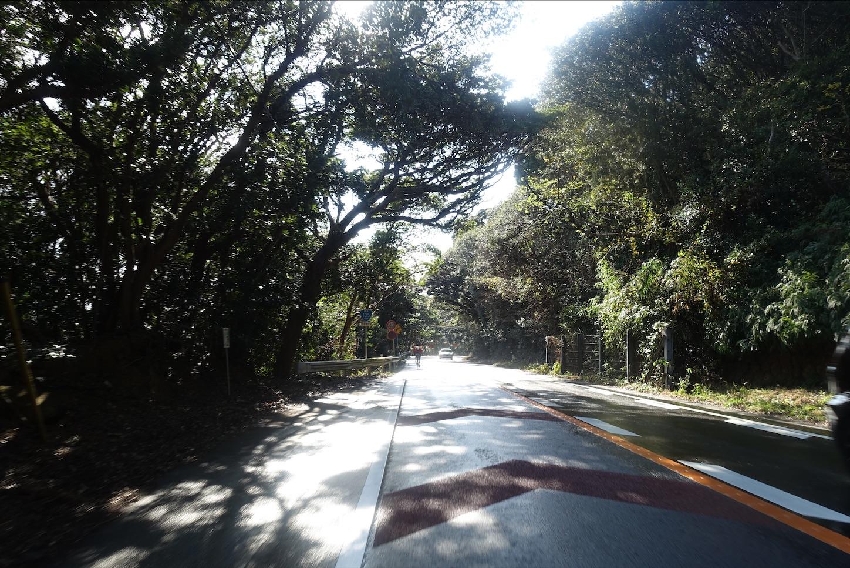 f:id:road_mushi:20200115174134j:image