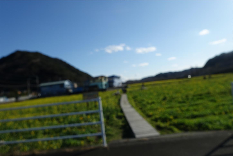 f:id:road_mushi:20200115174216j:image