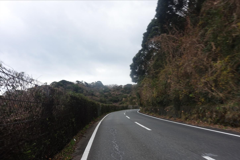 f:id:road_mushi:20200115174742j:image