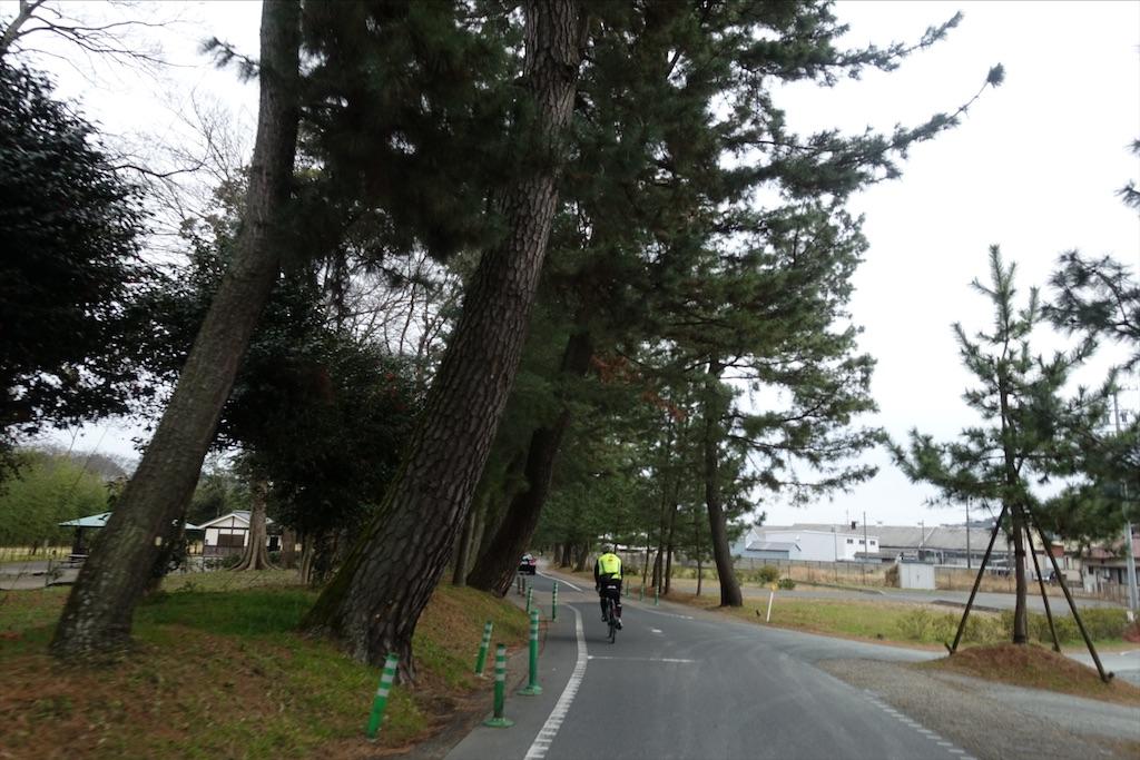 f:id:road_mushi:20200218204848j:image