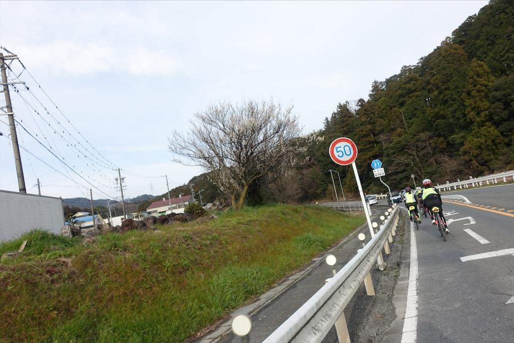 f:id:road_mushi:20200218205404j:image