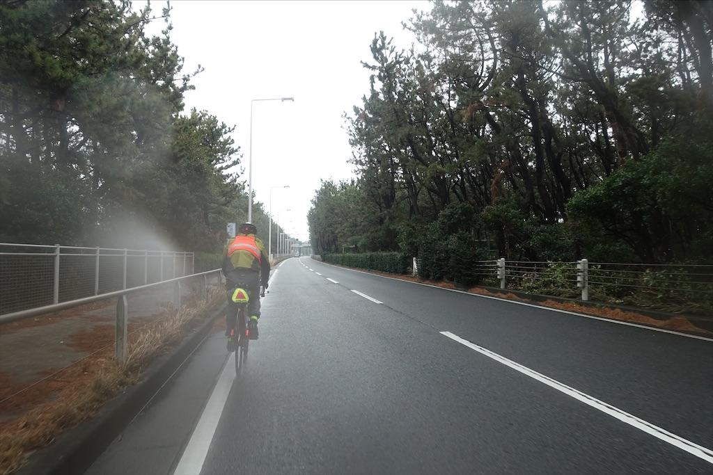 f:id:road_mushi:20200219191659j:image