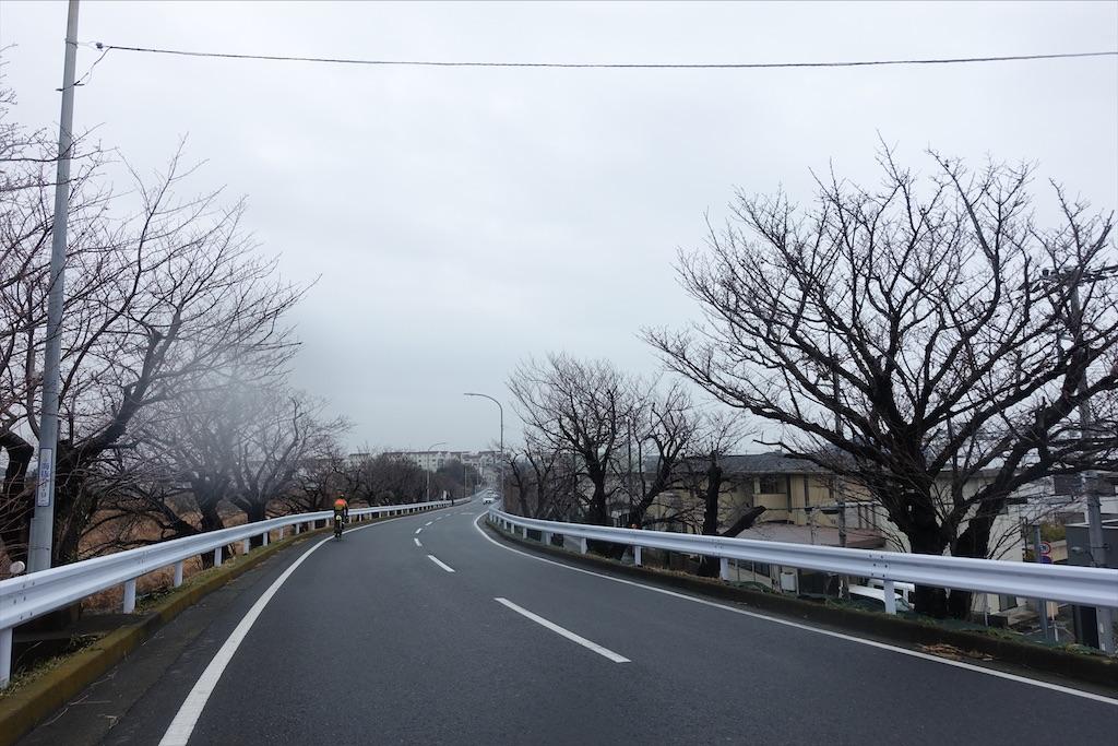 f:id:road_mushi:20200219191836j:image