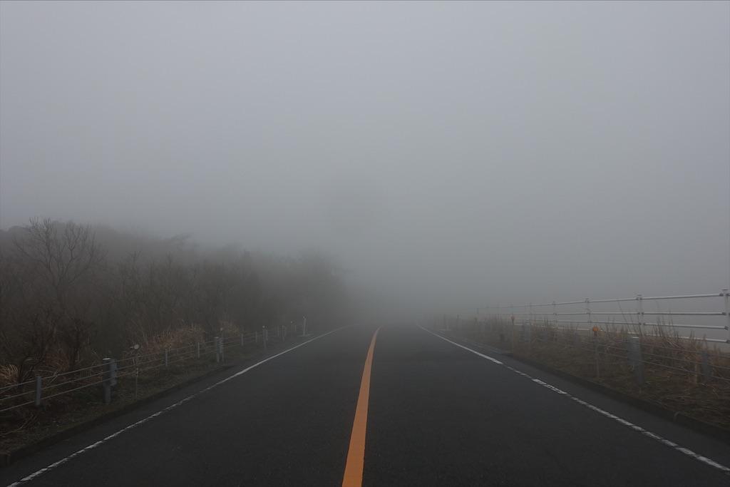 f:id:road_mushi:20200311221607j:image
