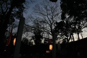 [神社][夕暮れ]