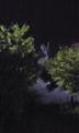 夜空に浮かび上がるガンダム