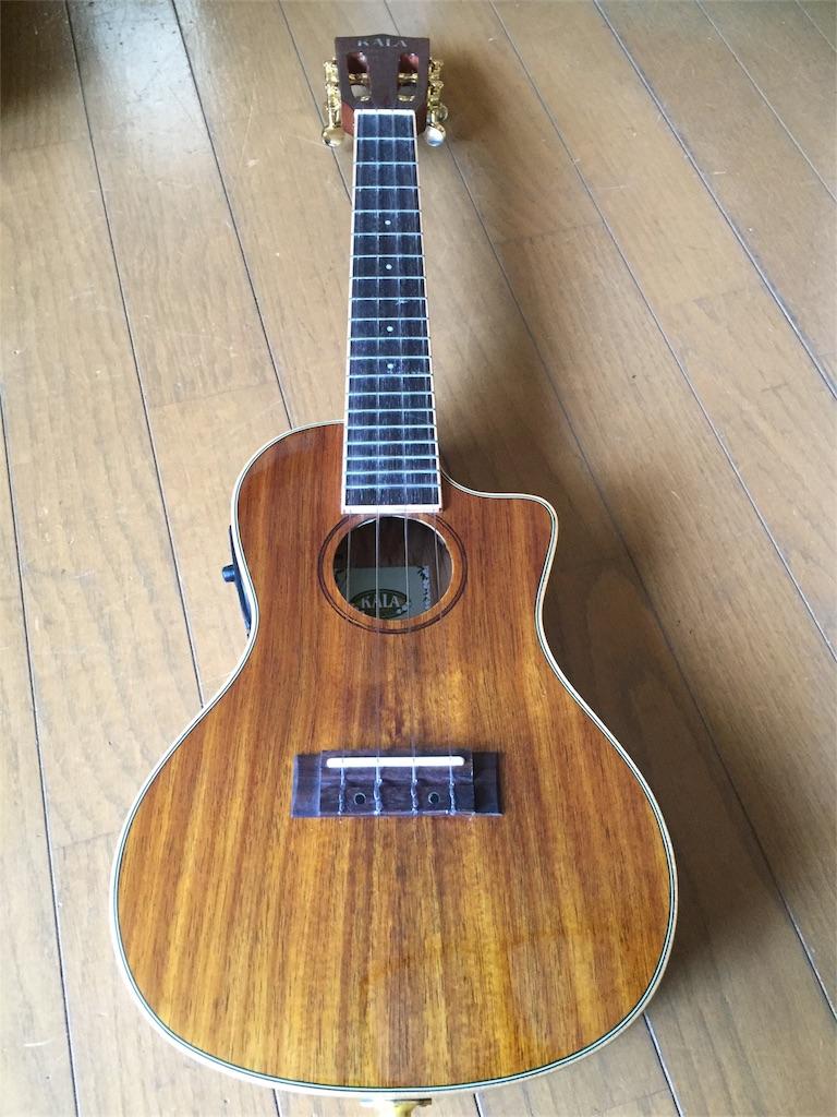 f:id:rockn-guitar:20170125234854j:image