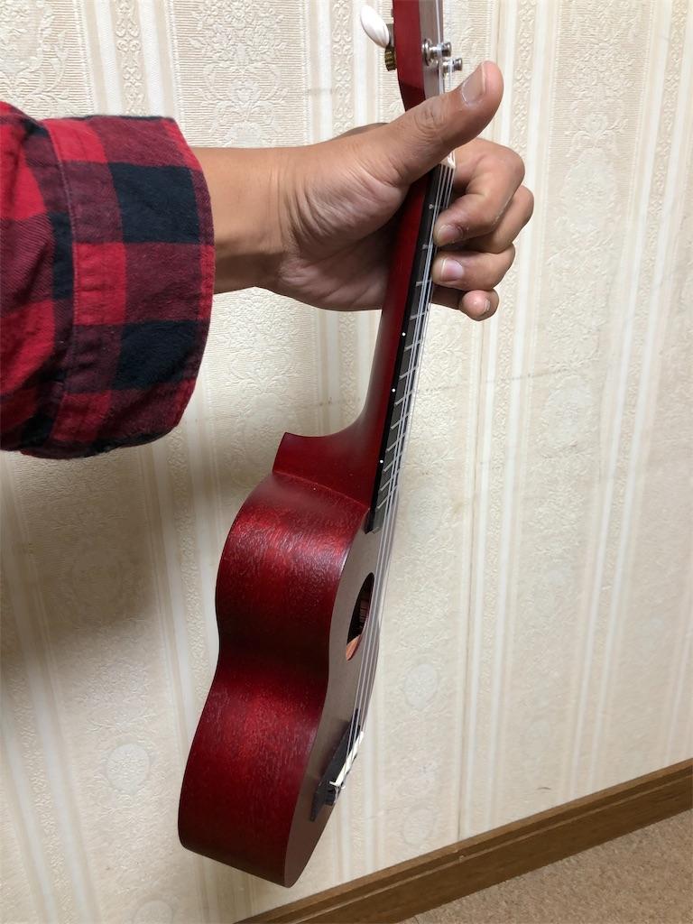 f:id:rockn-guitar:20191113121532j:image