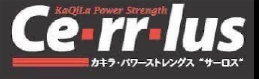 f:id:rokkotsu113:20210429135351j:image