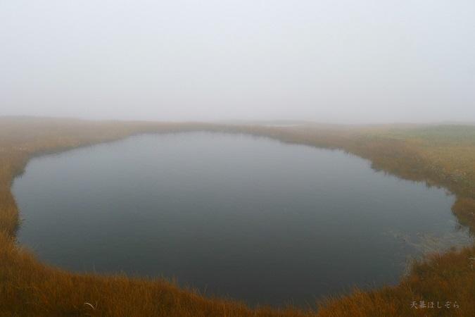 苗場山の池塘
