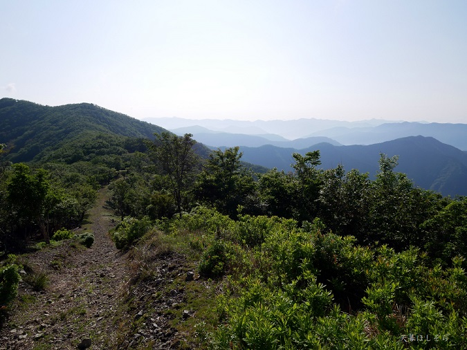 伯母子岳の登山道