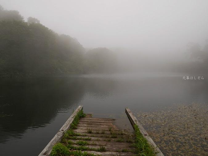 霧のテントサイト