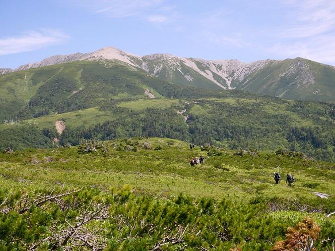 雲ノ平周回の登山道