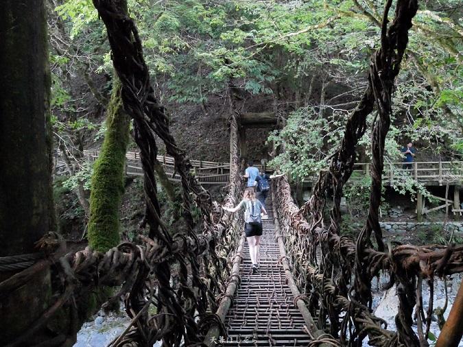 奥祖谷二重かずら橋と外国人観光客