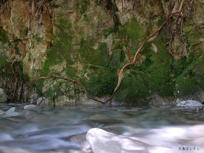 関西の美しい川