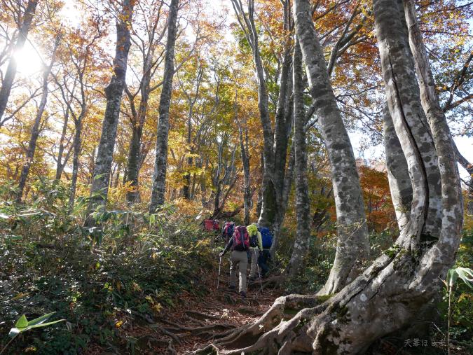 荒島岳の紅葉と登山客