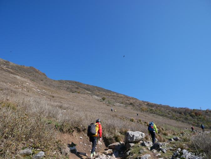 伊吹山の登山道