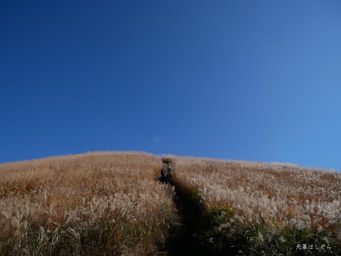 ダイヤモンドトレールの山