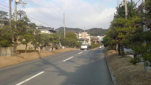 SN3D0145.jpg