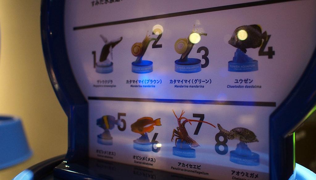 水族館ガチャのラインナップ