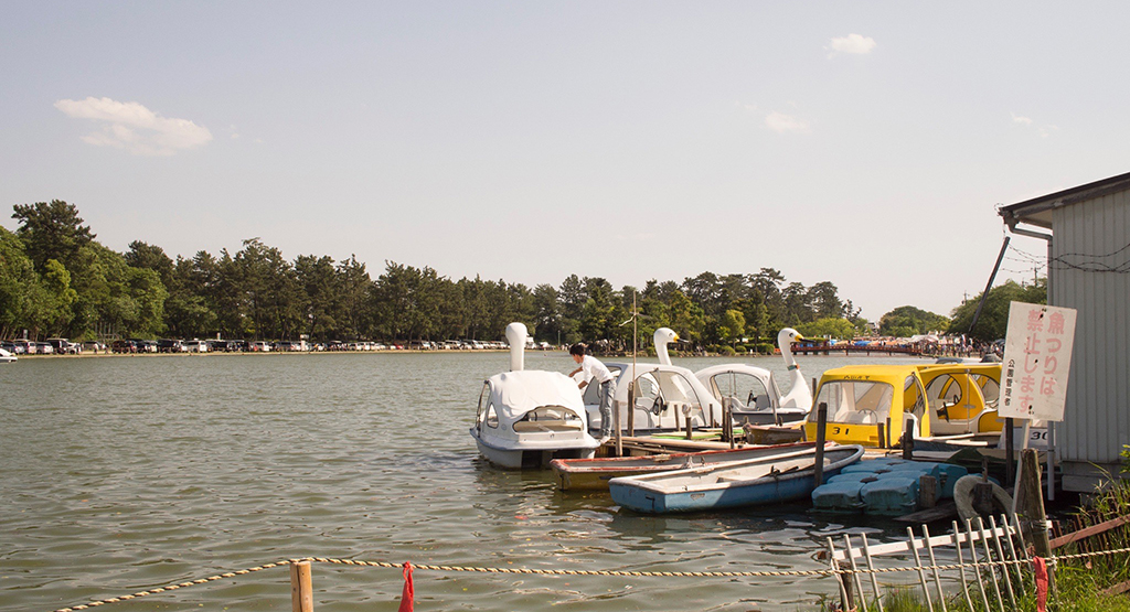 池とあひるさんボート
