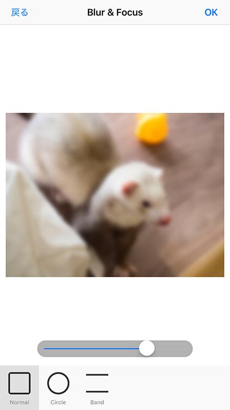Blur_Focus_normal