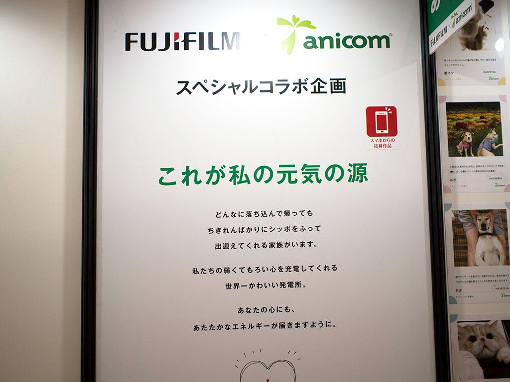 FUJIFILM anicom スペシャルコラボ企画「これが私の元気の源」看板