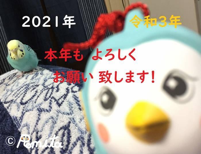 f:id:romita:20210110223205j:plain