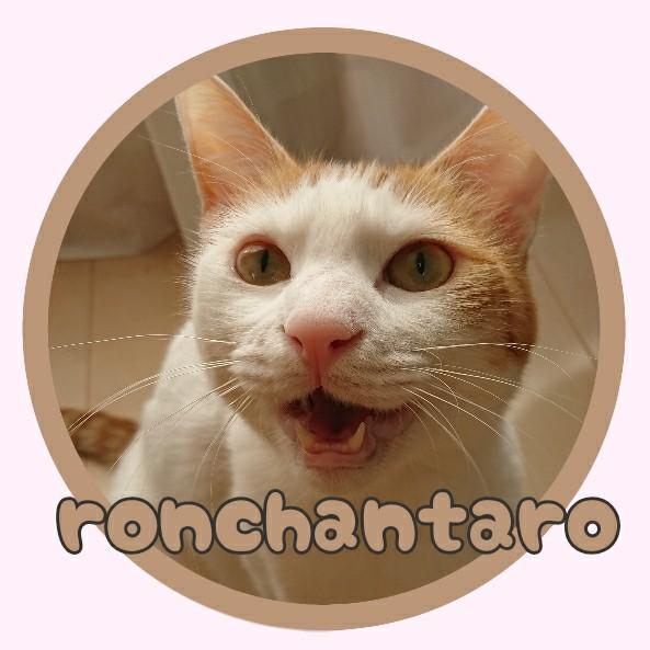 f:id:ronchantaro:20210130164920j:plain