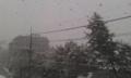 鹿児島猛烈な吹雪に