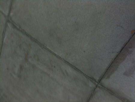 20100516130346