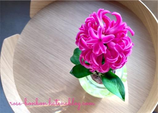 f:id:rose-bonbon:20190227085859j:image