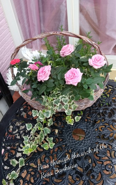 f:id:rose-eiko:20210626053845j:image