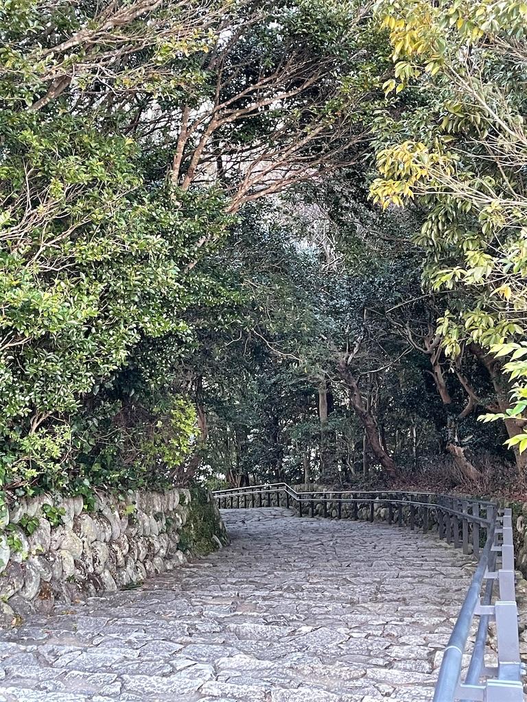 f:id:rosehazuki:20210322221416j:image