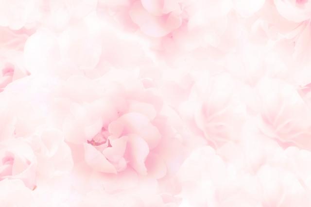 f:id:rosemarylab:20171229174930j:plain