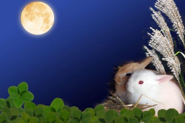 双子座満月・半影月食