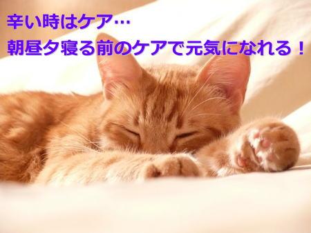 f:id:roshian25:20160905122154j:plain