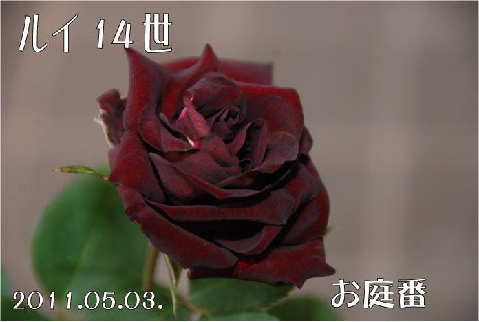 f:id:rotling:20110503095406j:image
